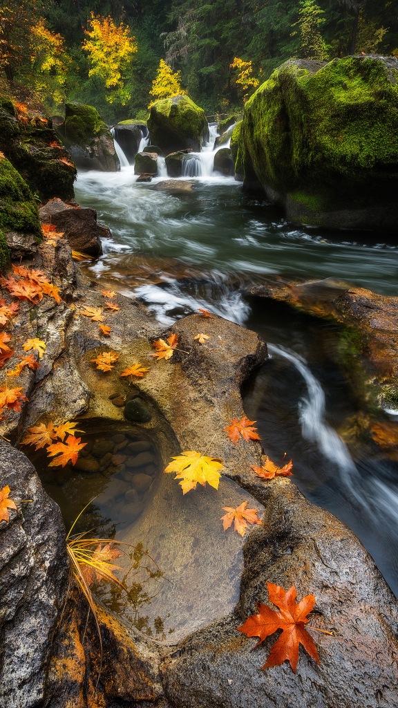 bagshaw_battaile_falls (1)